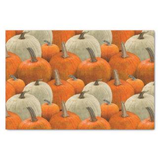 Pumpkin Patch Tissue Paper