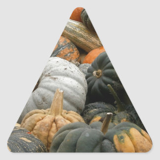 Pumpkin Patch Triangle Sticker