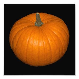 Pumpkin Photo on Black Background