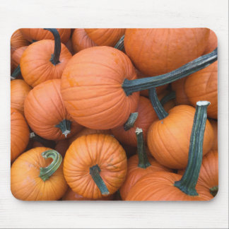 Pumpkin Pile! Mouse Pad