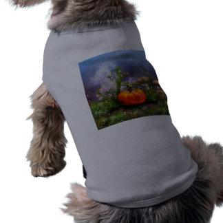 Pumpkin Pixie Pet Shirt
