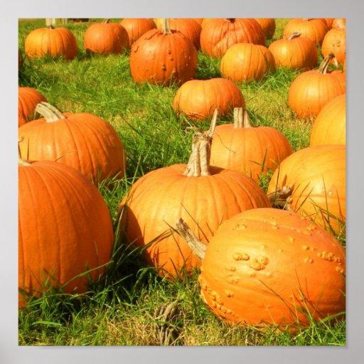 pumpkin plethora print