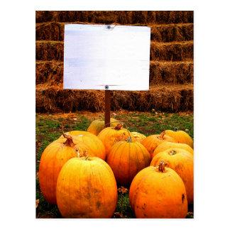 Pumpkin Protest - Sharpy Required Postcard