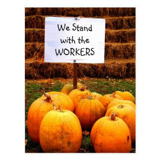 Pumpkin Protest - Standing w/Labor Postcard