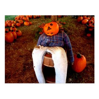 Pumpkin Scarecrow Halloween Pumpkin Patch Postcard