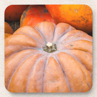 Pumpkin Season Coaster