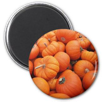 Pumpkin Time 6 Cm Round Magnet