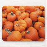 Pumpkin Time Mouse Mat