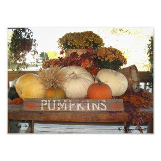 Pumpkin Welcome Print Photographic Print