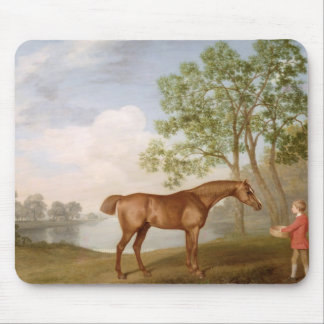 Pumpkin with a Stable-Lad, 1774 (oil on panel) Mouse Mat