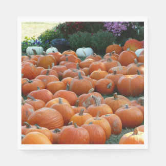 Pumpkins and Mums Autumn Harvest Photography Disposable Napkins