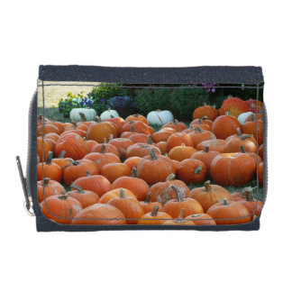 Pumpkins and Mums Autumn Harvest Photography Wallets