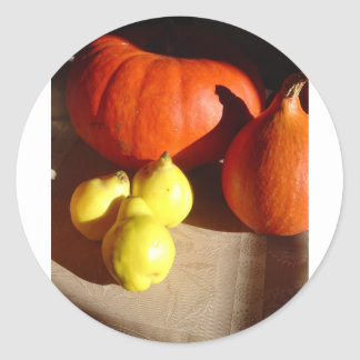 Pumpkins and Pears Round Sticker