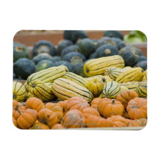 Pumpkins and squash on display at farmer's rectangular photo magnet