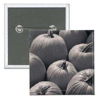 Pumpkins at a local farmer's market 15 cm square badge