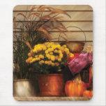 Pumpkins - Autumn Still Life II