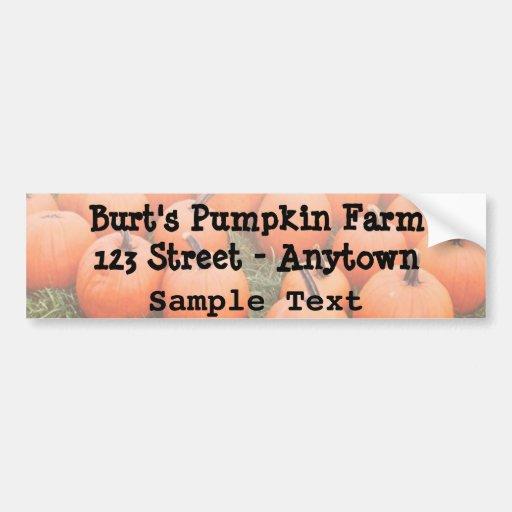 Pumpkins Bumper Stickers