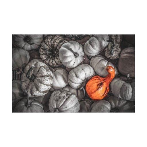 Pumpkins Stretched Canvas Print
