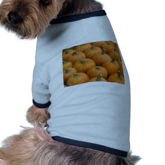 Pumpkins Pet Tshirt