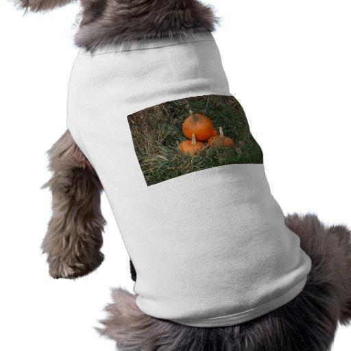 Pumpkins Doggie T-shirt