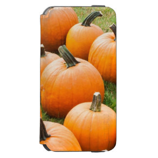 Pumpkins for Sale at a Farmer's Market Incipio Watson™ iPhone 6 Wallet Case