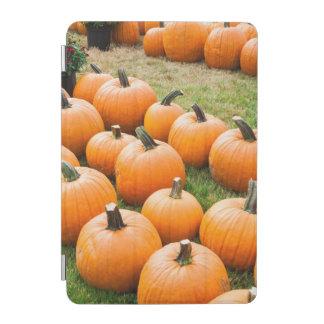 Pumpkins for Sale at a Farmer's Market iPad Mini Cover
