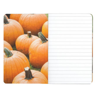 Pumpkins for Sale at a Farmer's Market Journal