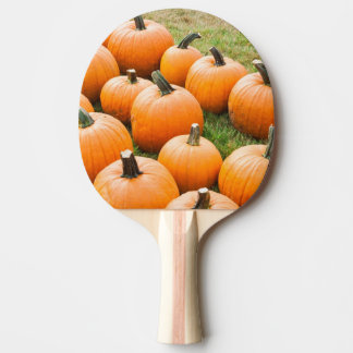 Pumpkins for Sale at a Farmer's Market Ping Pong Paddle