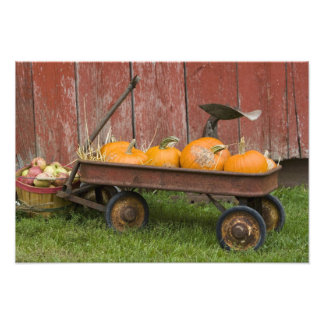 Pumpkins in old wagon art photo