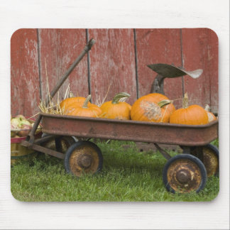 Pumpkins in old wagon mouse mat