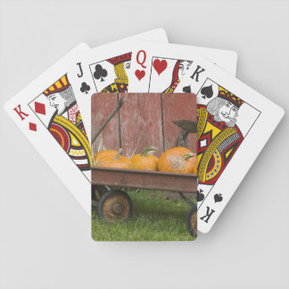 Pumpkins in old wagon playing cards