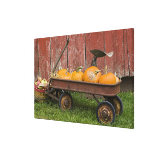 Pumpkins in old wagon stretched canvas print