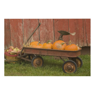 Pumpkins in old wagon wood canvas