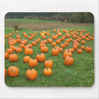 Pumpkins in the field mouse mat