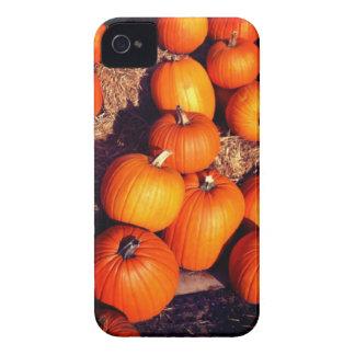 Pumpkins iPhone 4 Case
