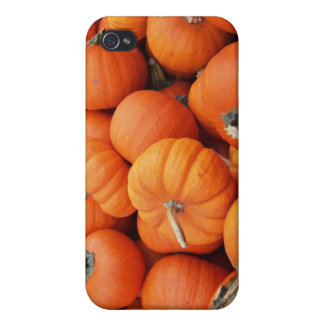Pumpkins Cases For iPhone 4