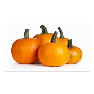 Pumpkins On White Background Pack Of Standard Business Cards