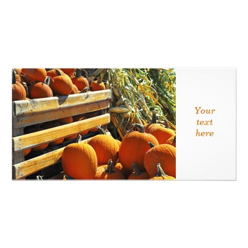 Pumpkins Picture Card