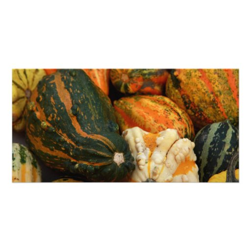 pumpkins personalized photo card