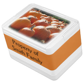 Pumpkins Photo for Fall, Halloween or Thanksgiving Igloo Cool Box