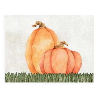 Pumpkins Postcard