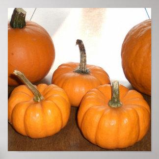 Pumpkins Posters