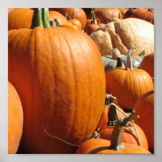 Pumpkins Print