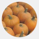 Pumpkins Round Stickers