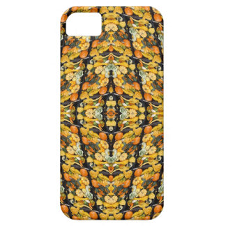 Pumpkins, Squash, and Gourds - Abstract iPhone 5 Covers