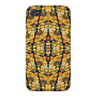 Pumpkins, Squash, and Gourds - Abstract iPhone 4/4S Covers