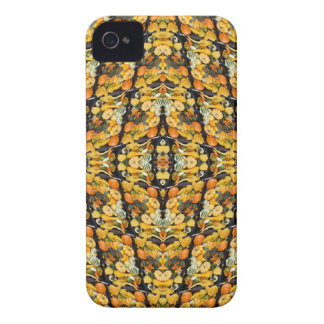 Pumpkins, Squash, and Gourds - Abstract iPhone 4 Case-Mate Case