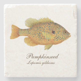 Pumpkinseed Sunfish Coaster