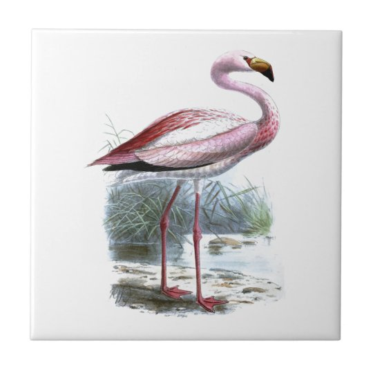 Puna Flamingo Small Square Tile