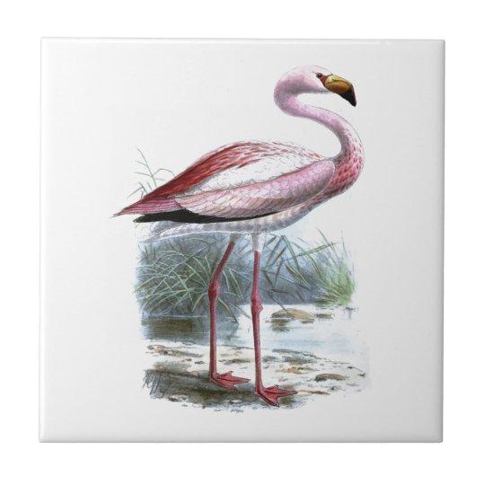 Puna Flamingo Tile